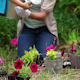 Mother And Daughter Watering Flowers Together - VideoHive Item for Sale