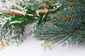 Christmas decoration - PhotoDune Item for Sale