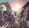 Winter in mountains - PhotoDune Item for Sale