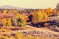 Autumn in Grand Teton - PhotoDune Item for Sale