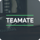 Teamate - One Page Company Website