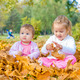 Autumn Fun In the Park - PhotoDune Item for Sale