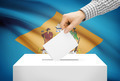 Voting concept - Ballot box with national flag on background - Delaware - PhotoDune Item for Sale