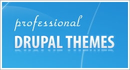 Pro Drupal Themes