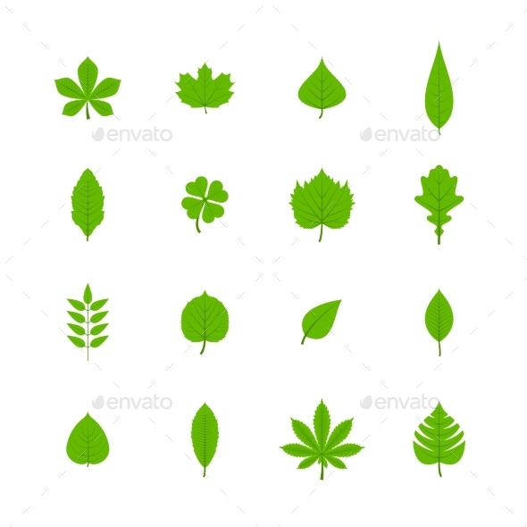 GraphicRiver Green Leaves Icons 9638312