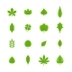 Green Leaves Icons - GraphicRiver Item for Sale