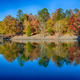 Autumn Landscape. Park in Autumn. The bright colors of autumn in the park by the lake. - PhotoDune Item for Sale