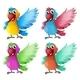 Four Parrots - GraphicRiver Item for Sale