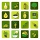 Olives Icons Flat - GraphicRiver Item for Sale