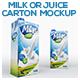 Milk or Juice Carton Mockup - GraphicRiver Item for Sale