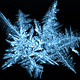 Frost - GraphicRiver Item for Sale