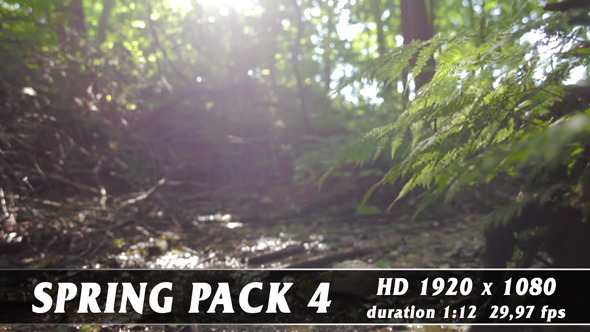 VideoHive Spring Pack 4 9649496