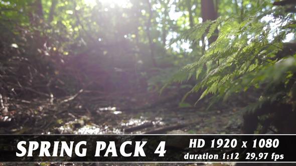 Spring Pack 4