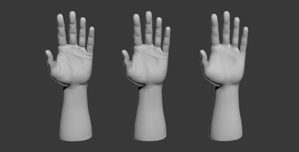 3DOcean 3D Hand Model 9649497