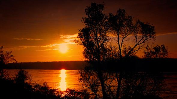 River Bank at Dawn