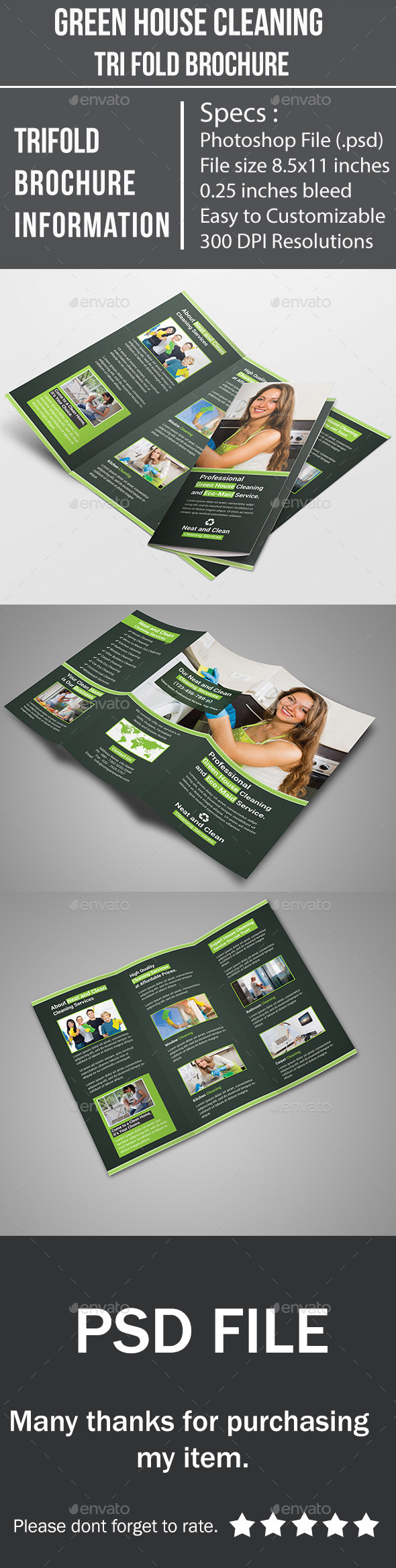 GraphicRiver Green House Cleaning Tri Fold Brochure 9654687