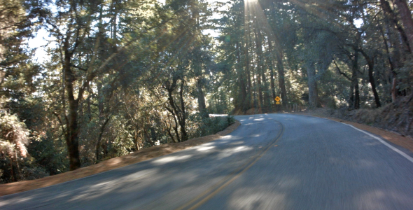 VideoHive Driving Through Forrest 2 9661207