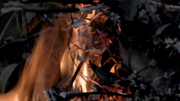 VideoHive Fire 9662957