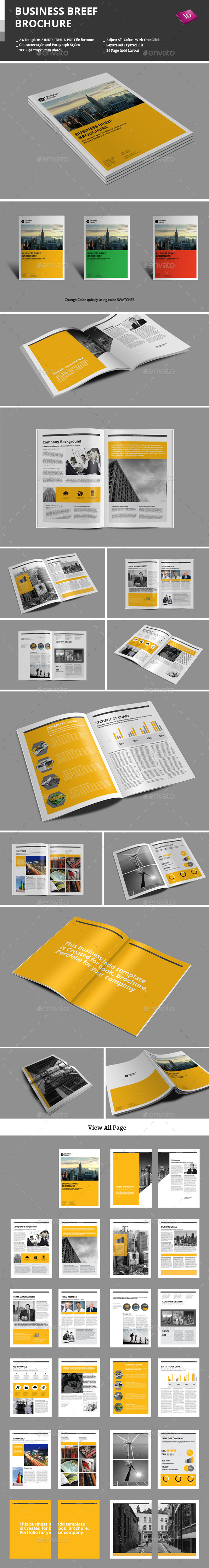 GraphicRiver Business Breef Brochure 9669071
