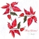 Background with Red Christmas Poinsettia 05 - GraphicRiver Item for Sale
