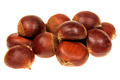 Fresh chestnuts group isolated on white - PhotoDune Item for Sale