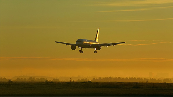 VideoHive Landing 9674162