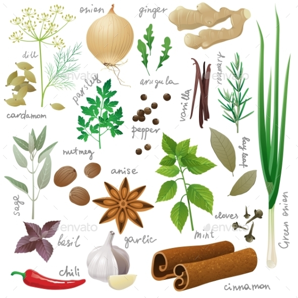 GraphicRiver Herbs and Spices 9675060