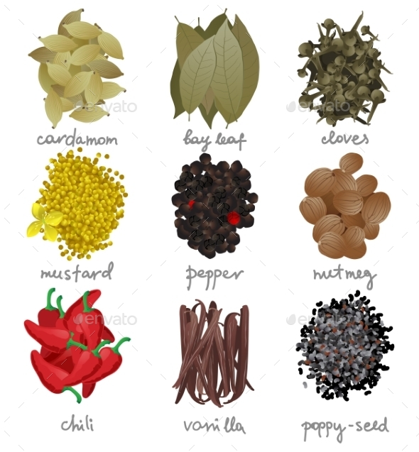 GraphicRiver Different Spices Set 9675124