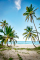 Idyllic Caribbean coastline - PhotoDune Item for Sale