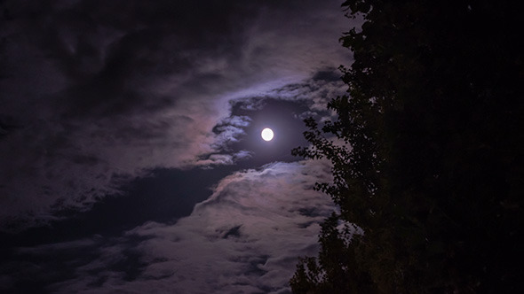 VideoHive Moon in the Clouds 9676120