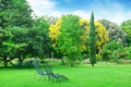 Lounge chairs for relaxing in the summer park - PhotoDune Item for Sale