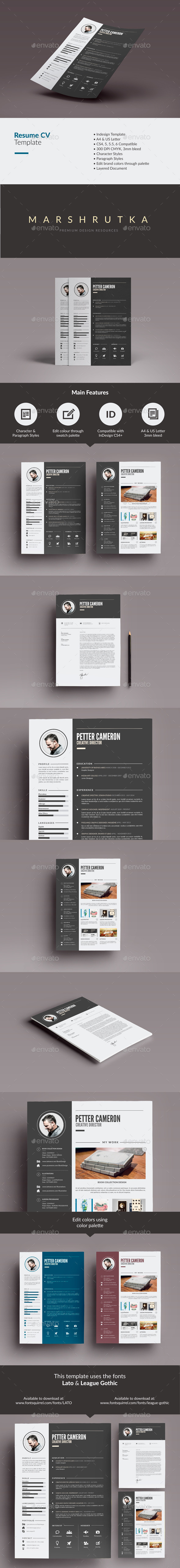 GraphicRiver Resume CV 9677157