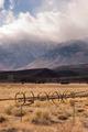 Owen's Vally Sierra Neveda Mountains Livestock Cattle Ranch - PhotoDune Item for Sale
