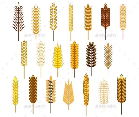 GraphicRiver Ears of Cereals and Grain Icons Set 9677468