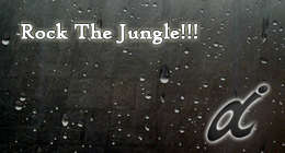Rock The Jungle!!!
