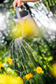 Summer Gardening - PhotoDune Item for Sale