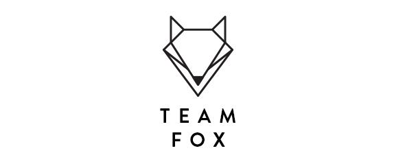 Teamfox cover