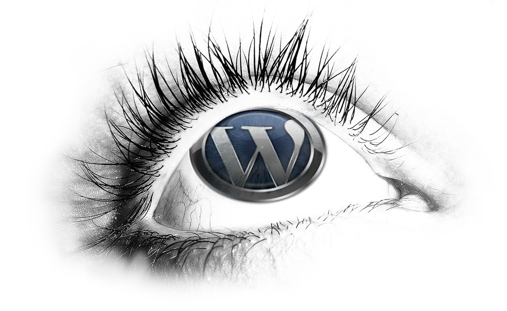 Amazing Wordpress Themes