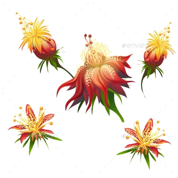 GraphicRiver Jungle Flowers 9685837