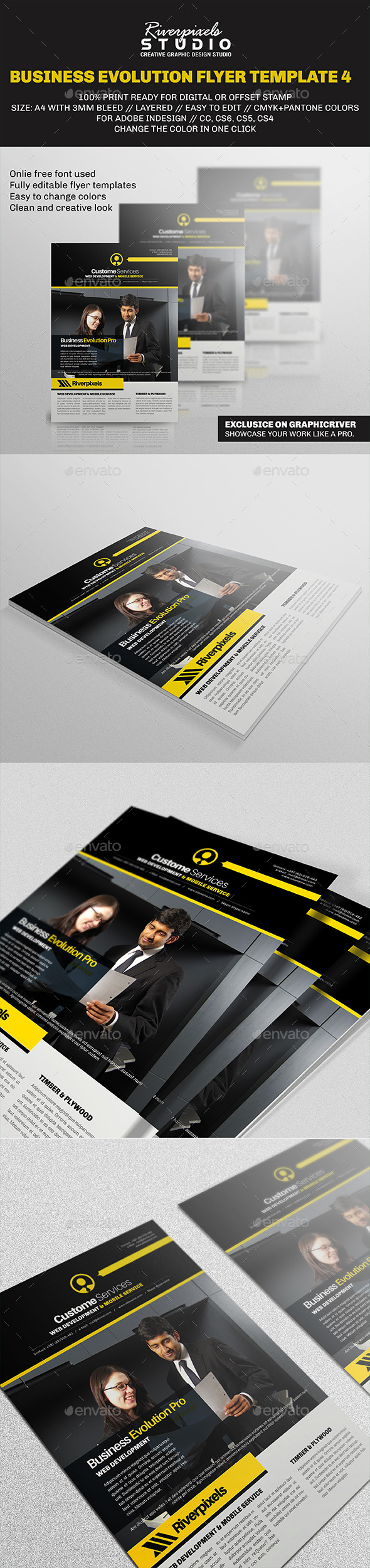 GraphicRiver Business Evolution Flyer Template IV 9692204