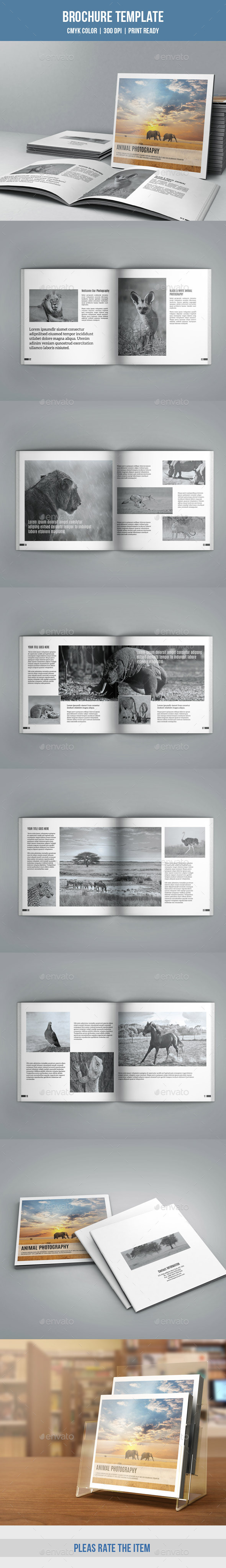 GraphicRiver Photographer Portfolio Brochure-V169 9693363