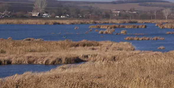VideoHive Reeds on Lake 9693835