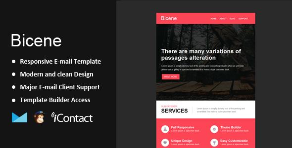 ThemeForest Bicene Responsive Email & Themebuilder Access 9694793