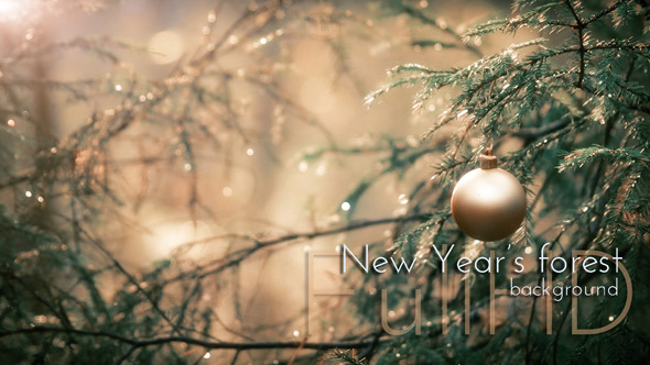 VideoHive New Year s Sphere in Forest 9695978