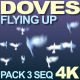 Doves Flying Up - VideoHive Item for Sale