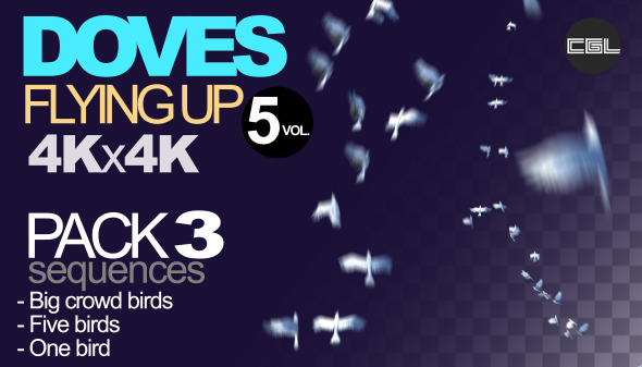 VideoHive Doves Flying Up 9696249