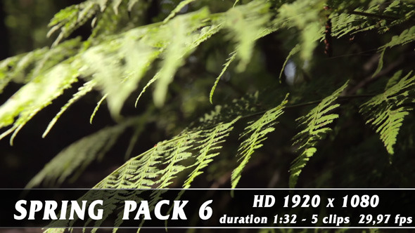 VideoHive Spring Pack 6 9696317