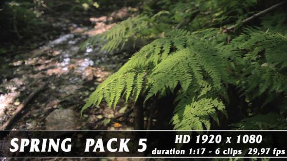 Spring pack 5