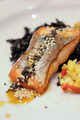 Grilled Salmon - PhotoDune Item for Sale