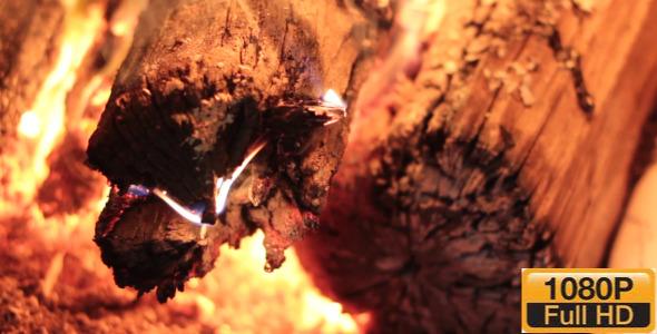 VideoHive Burning Firewood 9702232